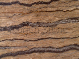 Walnut Travertine (MS-T29)